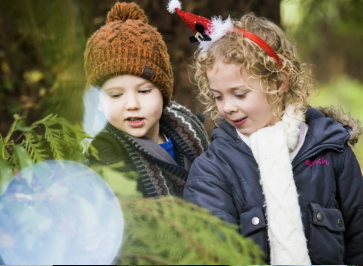 5 Fabulous places in Surrey to visit this Christmas
